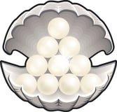 Shell mit Perlen Stockfoto
