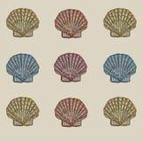 Shell modela Imagem de Stock Royalty Free