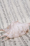 Shell on music Music score book Royalty Free Stock Photo