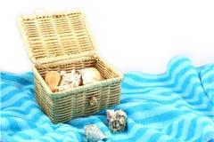 Shell na caixa Imagem de Stock