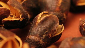 Shell nuts close up stock footage