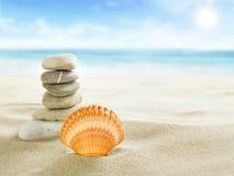 Shell och stenar på stranden Arkivfoto