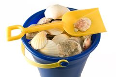 Shell Pail Stock Photo