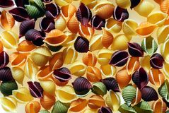Shell Pasta. Multi colored shell pasta for cooking Royalty Free Stock Image