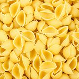 Shell pasta background Stock Photography