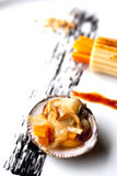 Shell and pasta Stock Images