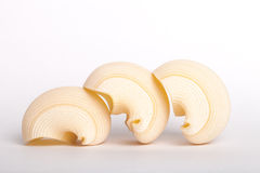 Shell pasta Royalty Free Stock Photos