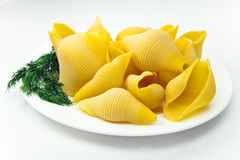 Shell pasta on a plate, with fennel Royalty Free Stock Image