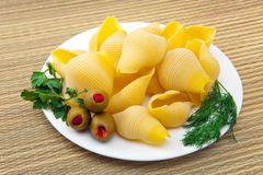 Shell pasta on a plate, with fennel, parsley Royalty Free Stock Images