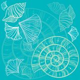 Shell pattern. Graphic pattern with sea shells Royalty Free Stock Photo