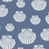 Shell pattern Stock Image