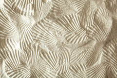 Shell patterns Royalty Free Stock Photography
