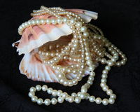Shell with pearl Stock Images