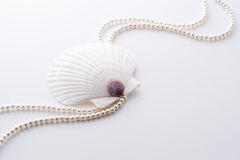Shell and pearl Royalty Free Stock Photography