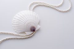 Shell and pearl Royalty Free Stock Photos