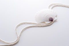 Shell and pearl Stock Image