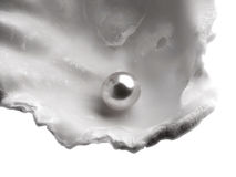 A shell with pearl Stock Photo