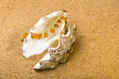 Shell with a pearl beads and amber Royalty Free Stock Photography