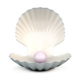 Shell pearl on a white Royalty Free Stock Photo