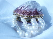 Shell and pearls Stock Photo