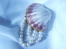 Shell and pearls royalty free stock photography