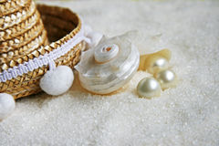 Shell and pearls Stock Image
