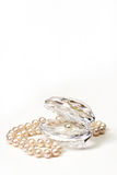 Shell with pearls Stock Photo