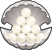 Shell with pearls. Abstract shell with pearl for emblem and other uses Stock Photo
