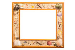 Shell Picture Frame Fotos de Stock Royalty Free