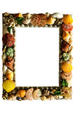 Shell picture frame. Royalty Free Stock Photo