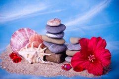 Shell, piedras, perlas y flor roja Fotos de archivo libres de regalías