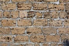 Shell rock concrete blocks wall Stock Photo