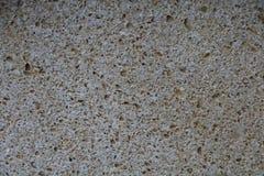 Shell rockowy mały pliki zbudować Łotwy rzeczy zadasza wiejską słomę pokrywającą się strzechą Zdjęcie Royalty Free