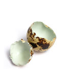 Shell roto del huevo de codornices fotografía de archivo