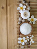 Shell, sal e flores do tiare Imagens de Stock