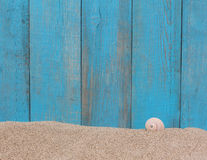 Shell on sand against a old wooden background Royalty Free Stock Images