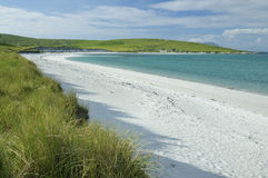 Shell Sand Beach bianca Immagini Stock