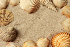 Shell and sand frame border Stock Photo
