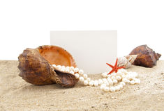Shell  on sand and a piece of a paper for a note Stock Photos