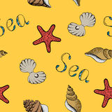 Shell sea graphic art color seamless pattern illustration Royalty Free Stock Image