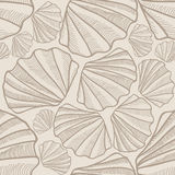 Shell seamless pattern. Sea shell stexture Stock Images