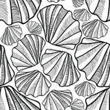 Shell seamless pattern. Sea shells texture Stock Photography