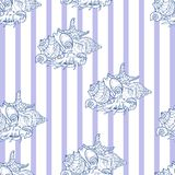 Shell seamless pattern on striped background. Vector illustration Stock Photography
