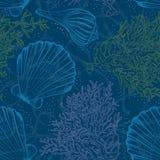 Shell seamless pattern Royalty Free Stock Image