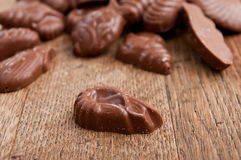 Shell-shaped chocolates pralines assortment Royalty Free Stock Photos