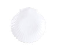 Shell shaped plate Stock Images
