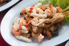 Shell Shrimp Fish and Octopus Seafood Stock Image