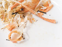 Shell shrimp heap. Stock Image