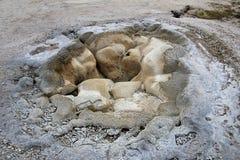 Shell Spring in bacino del geyser del biscotto nel parco nazionale di Yellowstone, U.S.A. fotografia stock libera da diritti