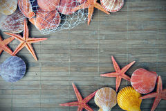 Shell and starfish frame Royalty Free Stock Photo